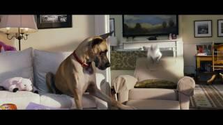 A kutyakomédia előzetes