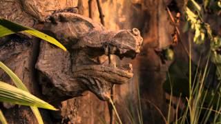 Varázslók a Waverly helyből - A film előzetes