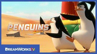 A Madagaszkár pingvinjei előzetes