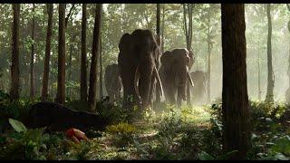 A dzsungel könyve előzetes