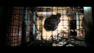 A majmok bolygója: Lázadás előzetes