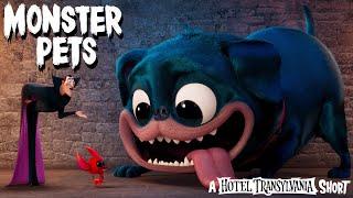 Hotel Transylvania - Házi szörnyek előzetes